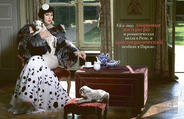 Моника Беллуччи (Monica Bellucci) в декабрьском Tatler Russia. Изображение № 2.