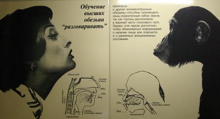 «ФотоЖЖабы Мутации вМузее Эволюции». Изображение № 1.