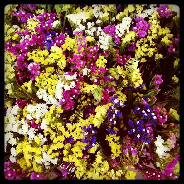 Название этих цветов я всегда забываю, но могу сказать точно: они очень долго стоят и потом засыхают в таком же виде. Изображение № 14.