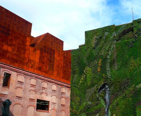 Диалог с природой: вертикальные сады. Изображение № 4.