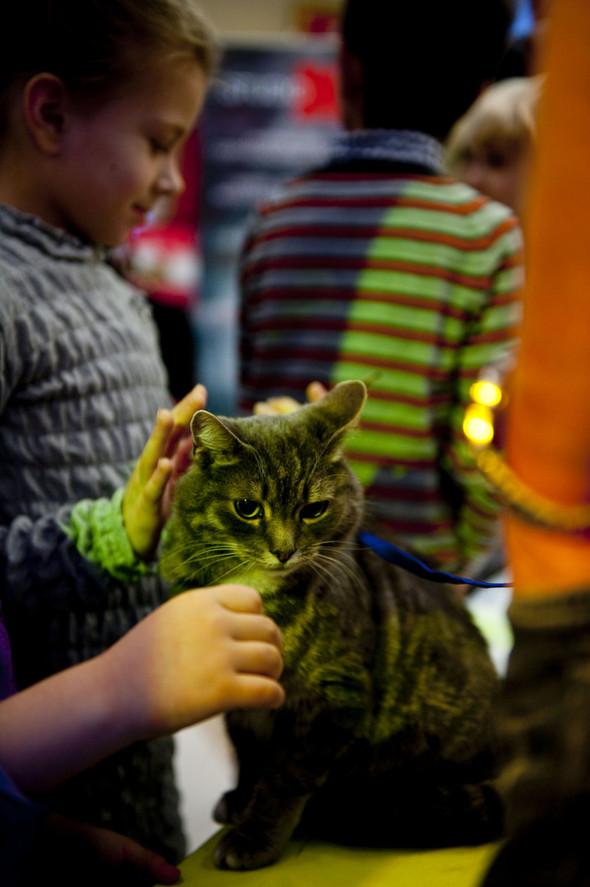 """В Детской Галерее """"Якиманка"""" состоялся Большой Новогодний Праздник. Изображение № 6."""