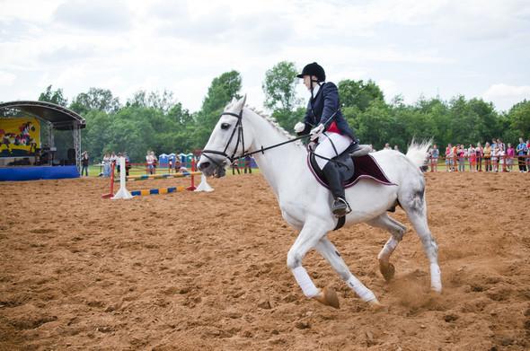 Фестиваль «День Лошади» прошел в Истринской долине. Изображение № 2.