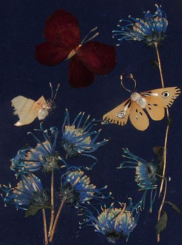 Вера и цветы. Изображение № 4.