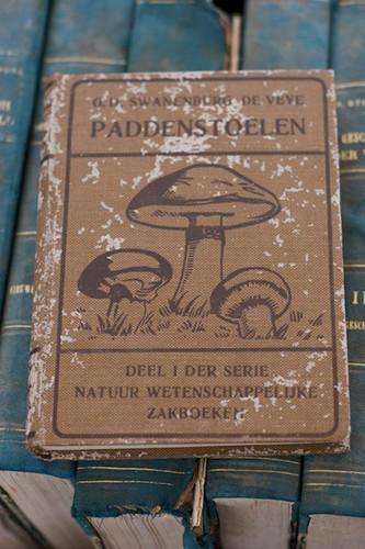 Изображение 48. Амстердам. Рынок и Девять Улиц с Каролайн.. Изображение № 14.