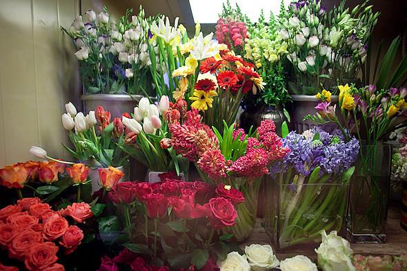Цвет оптом: Яркие краски в магазинах. Изображение № 24.