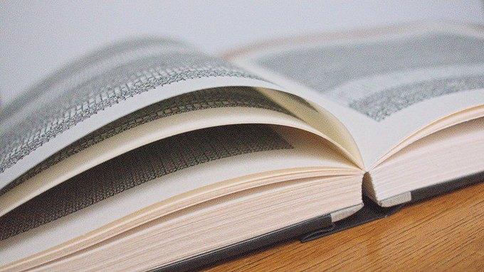 Книгу для будущих поколений написали бинарным кодом . Изображение № 1.