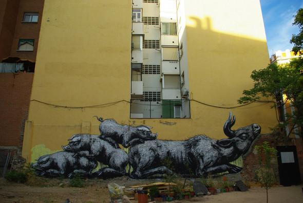 Животный стрит-арт от бельгийского граффитчика ROA. Изображение № 47.