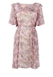 Изображение 6. Коллекция платьев Перл Лоу для марки Peacocks.. Изображение № 6.