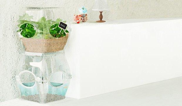 Самоочищающийся аквариум позволяет выращивать овощи. Изображение № 2.