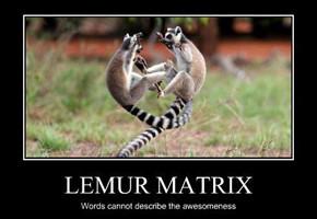 В мире животных: Герои «Мадагаскара» в мемах, рекламе и видеороликах. Изображение № 77.