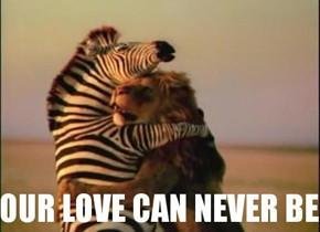 В мире животных: Герои «Мадагаскара» в мемах, рекламе и видеороликах. Изображение № 30.