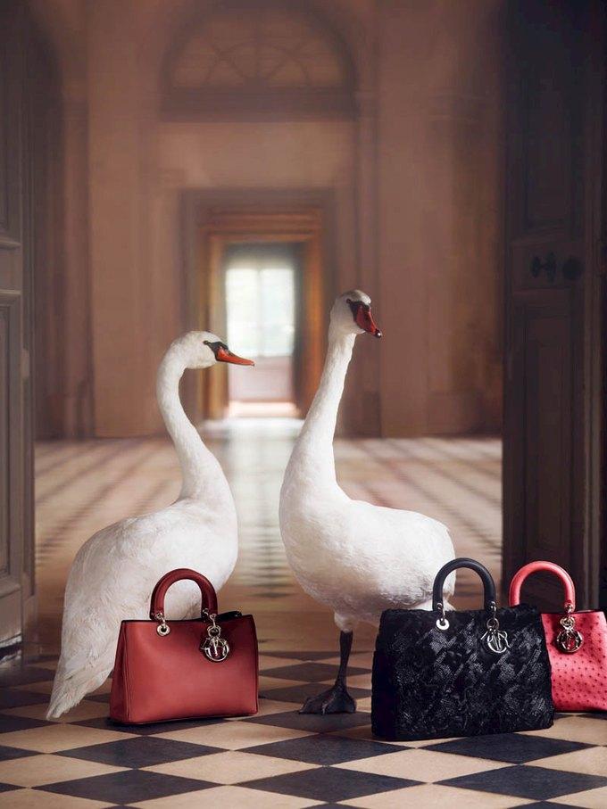 У Dior, Madewell и Pirosmani вышли новые коллекции. Изображение № 36.