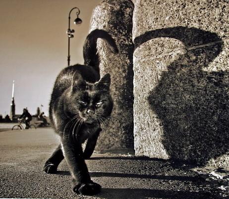 «Потрясающий город» Александра Петросяна. Изображение № 48.