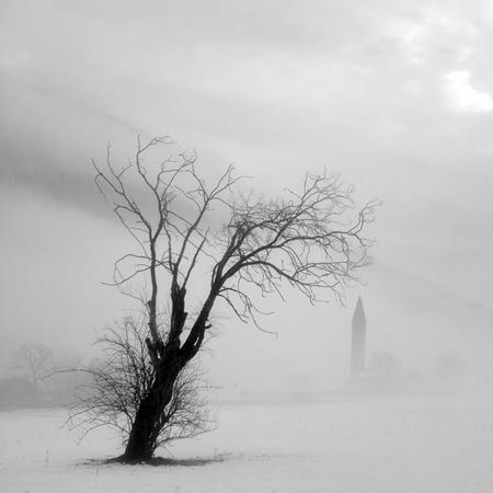 Туманные фотографии. Изображение № 4.