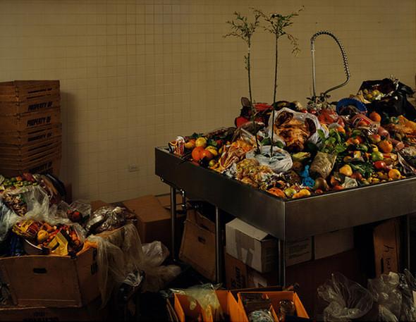 Американская таможня. Комната с контрабандой. Международный аэропорт Кеннеди (Куинс, Нью-Йорк). Африканские тростниковые крысы, личинки, картофель, листья карри, сушеная оранжевая кожица, свежие яйца, гигантская африканская улитка, семена, орехи, манго, бамия, маракуйя, нос свиньи, рты свиньи, свинина, сырая домашняя птица (цыпленок), голова южноамериканской свиньи, помидоры, южноазиатская известь, зараженные язвой цитрусовые, сахарный тростник, сырое мясо, неопознанное тропическое растение в почве и др. Все предметы на фотографии были изъяты из багажа пассажиров, прибывающих в США из-за границы за 48-часовой период. Каждый предмет идентифицируется, анализируется, а затем сжигается или перемалывается. Через аэропорт JFK проходит больше всего международных пассажиров, чем в любом другом аэропорту в Соединенных Штатах.. Изображение № 15.