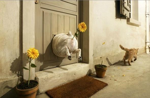 Изображение 7. Vincent Dixon. Рекламная фотография.. Изображение № 7.