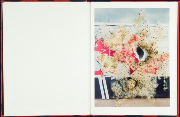 7 альбомов об абстрактной фотографии. Изображение № 63.