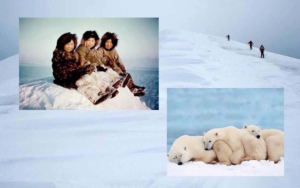 Белые медведи, Народы севера, альпинизм. Изображение № 16.