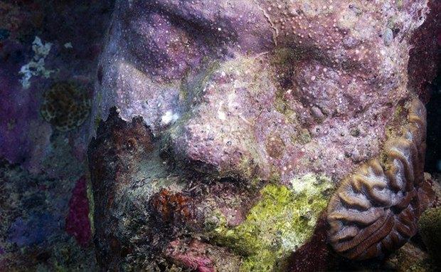 Пойди туда, не знаю куда: искусство в пустыне, тюрьме и на дне океана. Изображение №14.