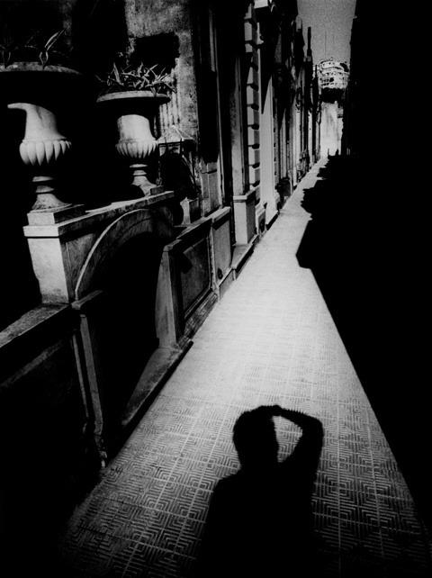 Daido Moriyama «POSTWAR PHOTOGRAPHY 2″. Изображение № 23.