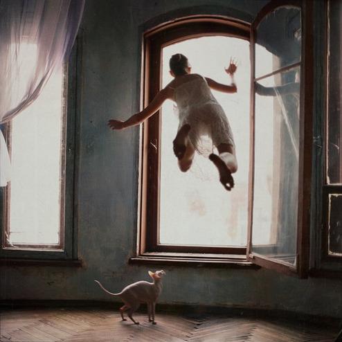 Отрицая гравитацию. Изображение № 3.