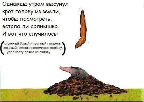 Сказка прообкаканного крота. Изображение № 2.