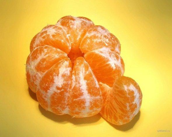 Оранжевый витамин. Изображение № 2.