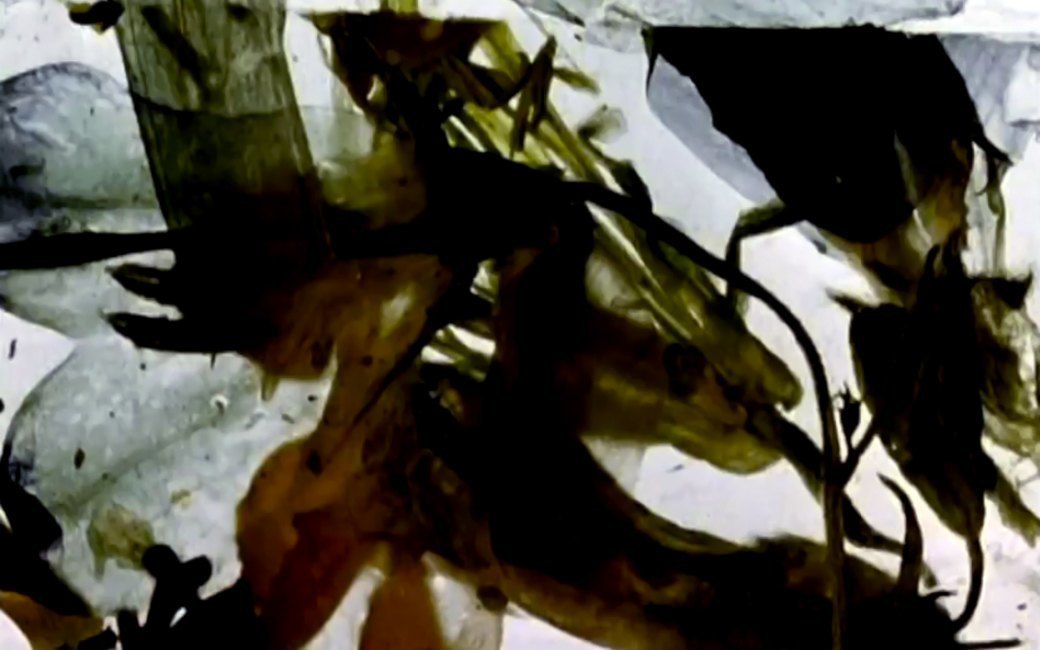 Тест Роршаха:  Sun Araw. Изображение № 4.