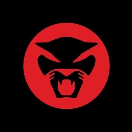 Изображение 1. Thundercat выпускает дебютный альбом.. Изображение № 1.