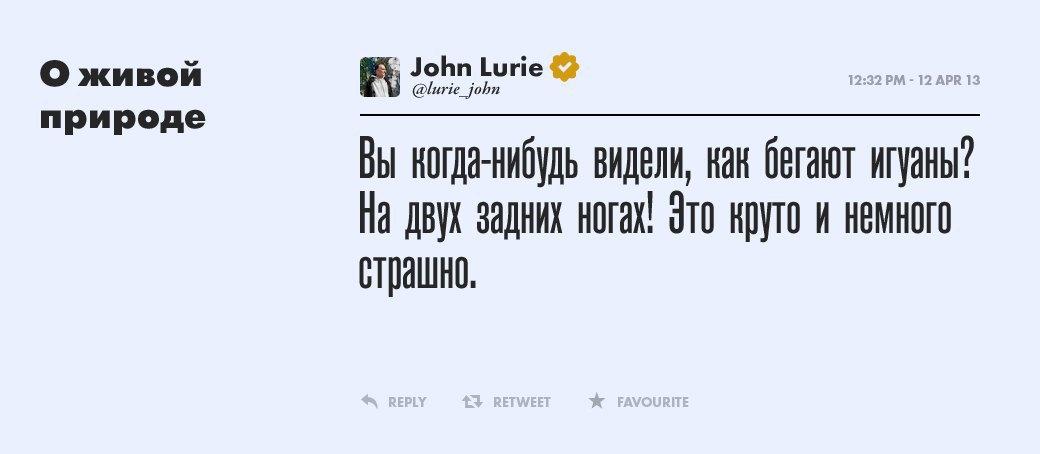 Джон Лури, художник и рыбак. Изображение № 6.