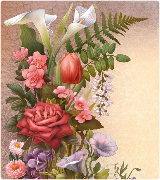 Красивые иллюстрации Ирины Винник. Изображение № 15.