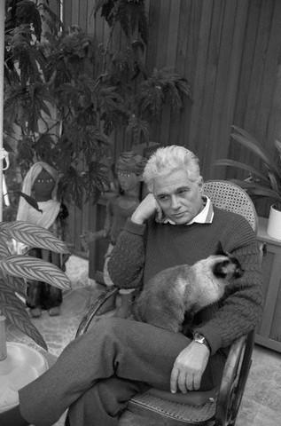 Знаменитые писатели и котики. Изображение № 7.