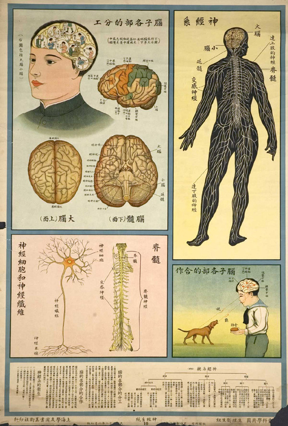 Будьте здоровы. Китайские плакаты натему здоровья. Изображение № 8.