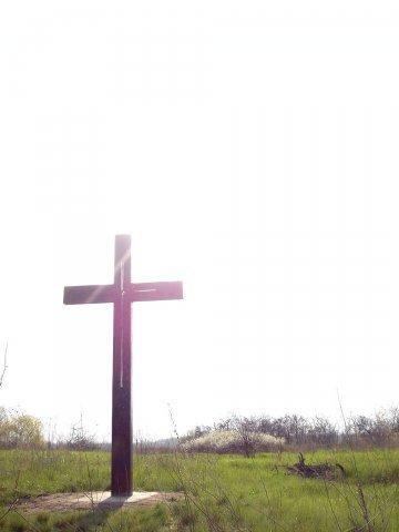 Только потому чтокрест. Изображение № 23.