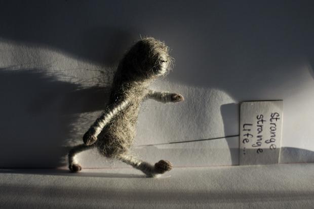 Strange life. Изображение № 5.