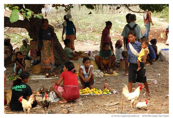 Восточный Тимор. Изображение № 16.