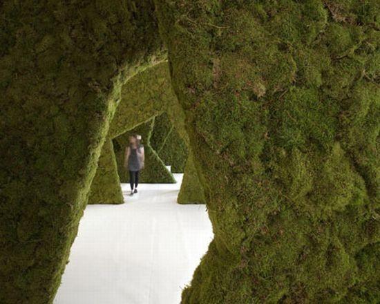 Диалог с природой: вертикальные сады. Изображение № 34.