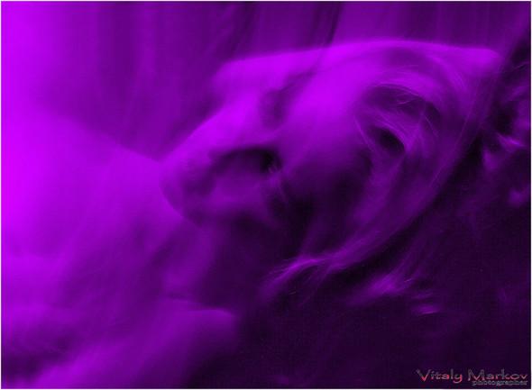 Фотоработы Виталия Маркова. Изображение № 1.