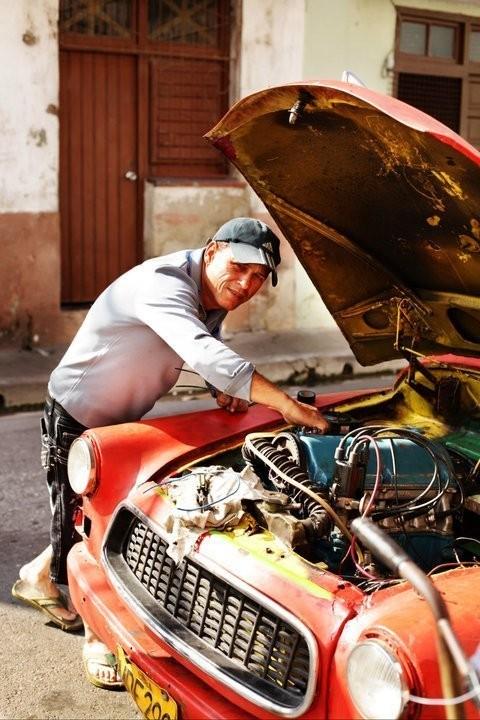 Изображение 25. Кубинский лук. Зима 2010/2011.. Изображение № 28.