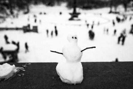 Фотографии зимы в New Yorker. Изображение № 4.