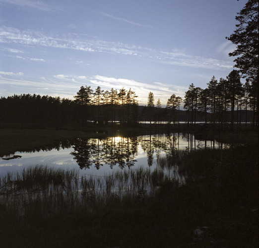 Норвежская грусть Ларса Боттена. Изображение № 7.