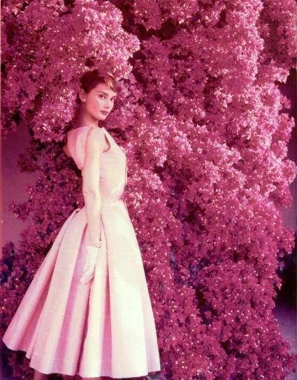 Одри Хепбёрн: «Не думала, что с лицом как у меня, я окажусь в кино».. Изображение №10.