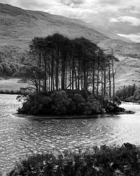 Изображение 50. Альберт Уотсон - шотландский фотограф, покоривший мир.. Изображение № 50.