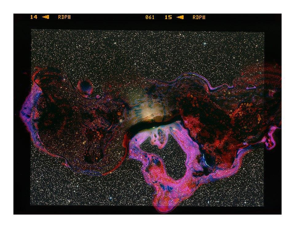 Космические пейзажи, созданные бактериями . Изображение № 2.