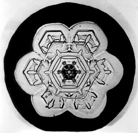 Уилсон Бентли иего снежинки. Изображение № 4.