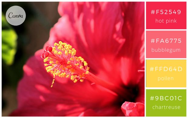 Сервис Canva предложил 100 удачных сочетаний цветов. Изображение № 20.
