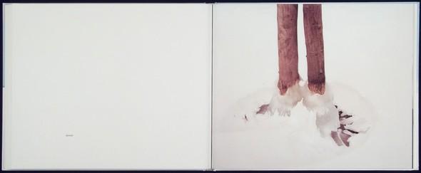 9 атмосферных фотоальбомов о зиме. Изображение № 9.