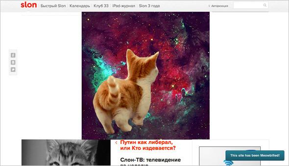 Котировка сайтов: Как заполнить любой сайт мигающими котами. Изображение №1.