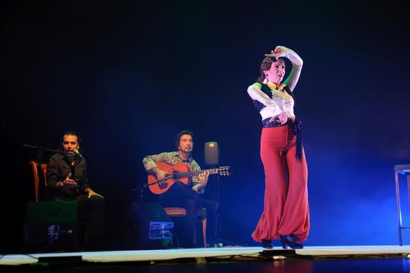 1-й Российский фестиваль фламенко. Изображение № 27.