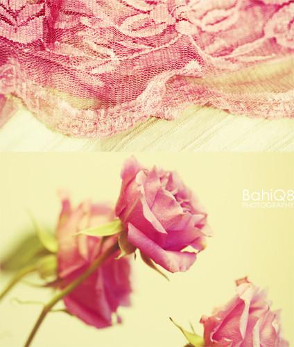 BahiQ8's photography. Изображение № 1.